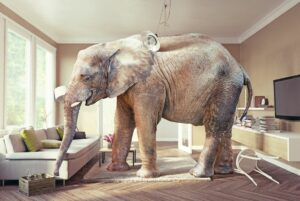 Elephant in the room is addiction